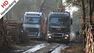 MAN Truck in mud | Get wood in the forest | Jan van der Weide & Zn Transport | NL.