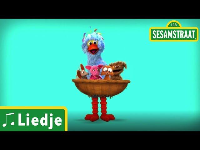 Poesje Mauw - Kinderliedje - Sesamstraat