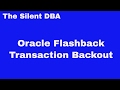 Oracle Flashback Transaction Backout
