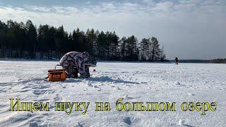 Ищем щучьи места зимой на большом озере Щука на жерлицы зимой Ночевка в лесной избе