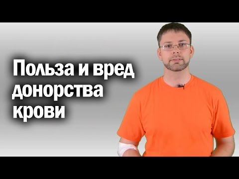 Польза и вред донорства крови   Канал Kotov Live