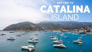 Catalina Island Day Trip: What to do in Avalon in One Day