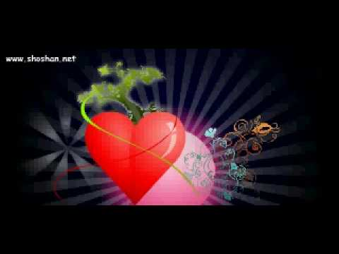 Postales animadas Gratis Shoshan