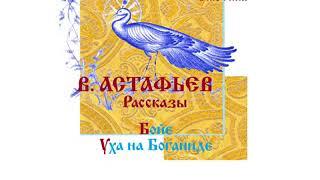 В. АСТАФЬЕВ, Рассказы: Бойе, Уха на Боганиде. Читает Вера Енютина