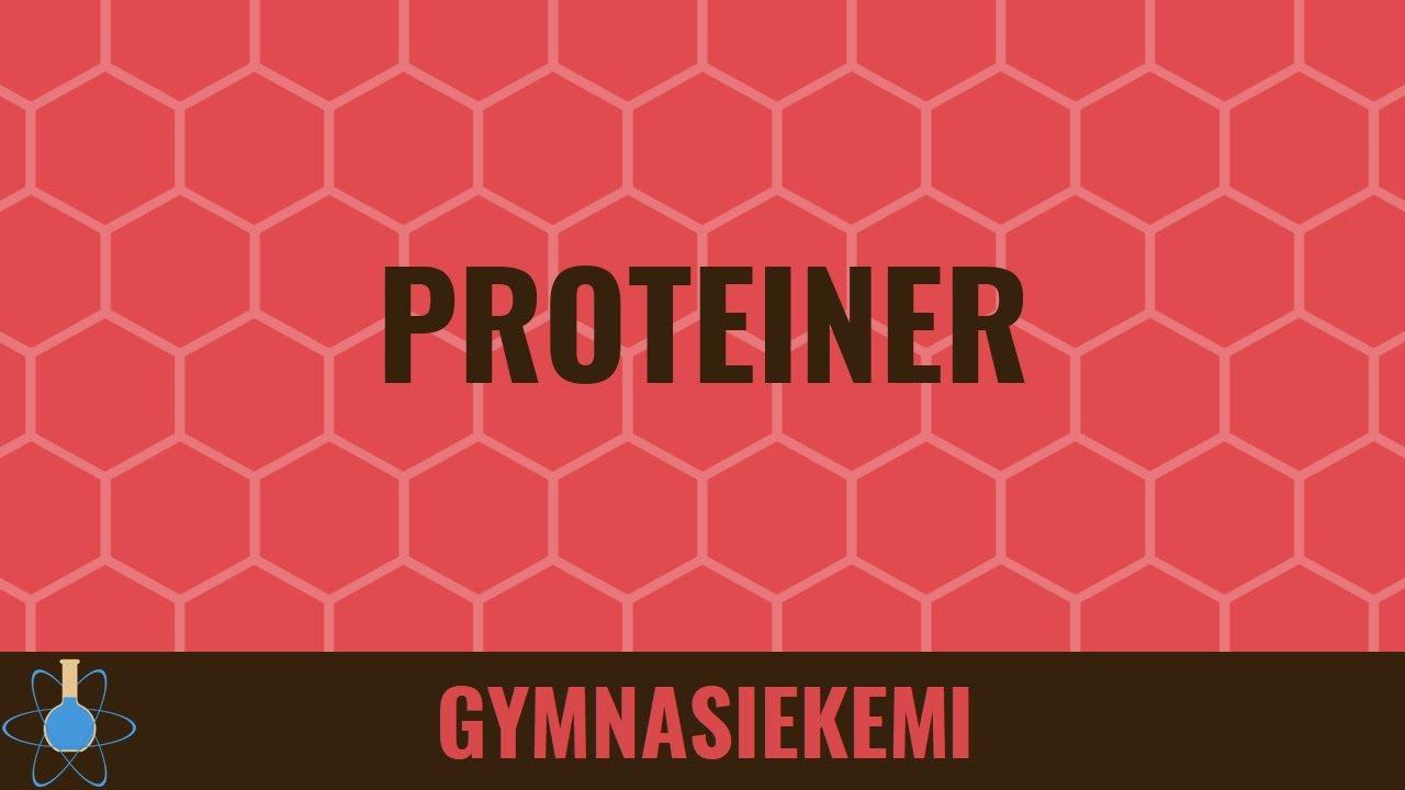 Proteiner - Biokemi 7 - Kemi B