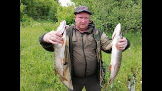 Верховье реки Быстрица. Рыбалка на спиннинг. Сплав с ночёвкой с препятствиями.