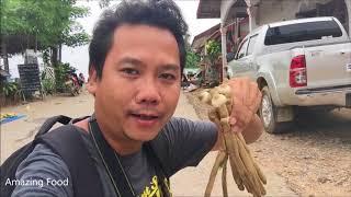 Laos Vang Vieng : Morning market in song river ,Laos food 2018