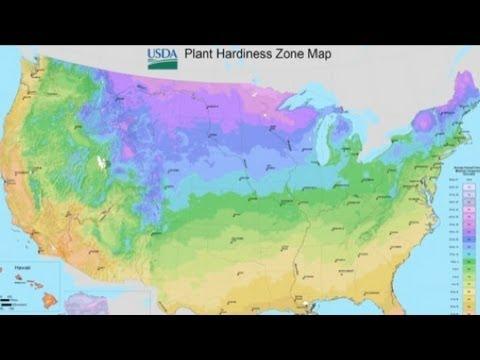 Understanding USDA Updates To Plant Hardiness Zone Map YouTube - Us hardiness zone map