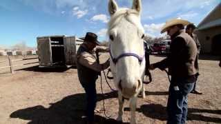The Lone Ranger Cast Training Behind The Scenes Featurette Youtube