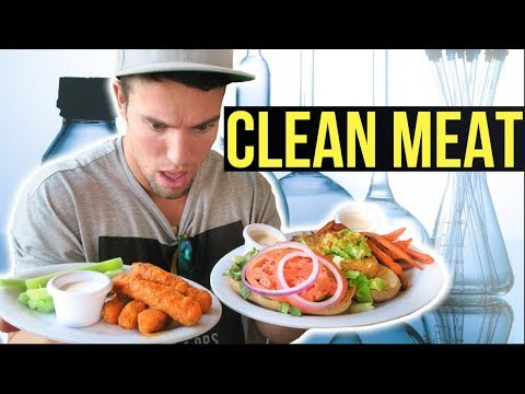 Why I might eat meat again | Thoughts on Clean Meat