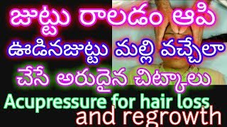Acupressure Treatment For Hair Fall|How to REGROW HAIR naturally for men,women|hair loss tips telugu