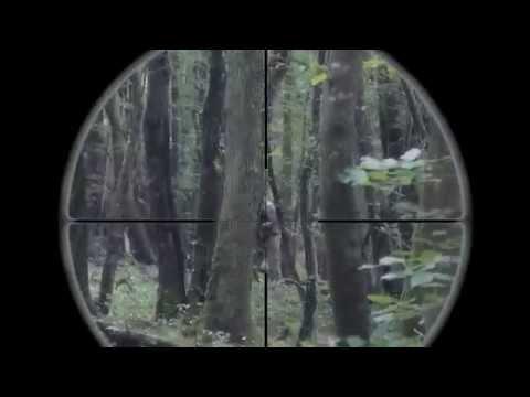 Airsoft Sniper | M40A3 | 450 fps | Scope cam