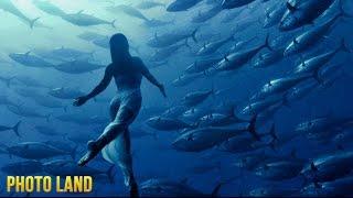 Подводные съёмки || PHOTO LAND (подъёмные съёмки видео, подводный мир)