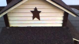 New Bird House For Spring