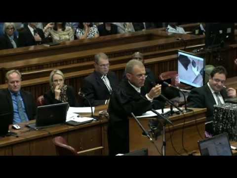Oscar Pistorius Trial: Wednesday 9 April 2014, Session 5