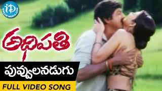 Adhipathi Movie - Puvvulanu Adugu Video Song || Mohan Babu, Nagarjuna, Preeti Jhangiani || Koti