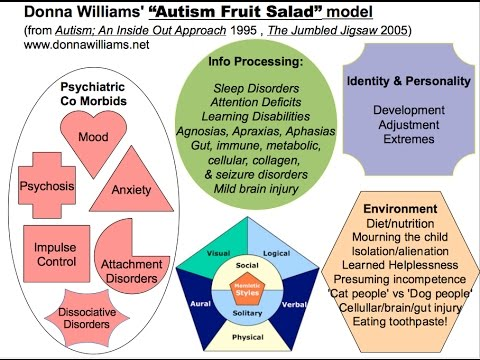 "Autism & Asperger Differences Using Donna Williams ""Fruit Salad"" Analogy 1995 HD"