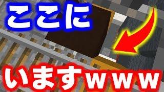 【マインクラフト】かくれんぼでマップ外に行けたんだがwww【マイクラ実況】 thumbnail