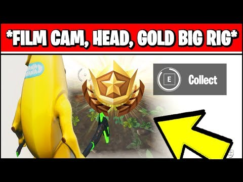 SEARCH BETWEEN A BASEMENT FILM CAMERA, A SNOWY STONE HEAD AND A FLASHY GOLD BIG RIG (Fortnite)