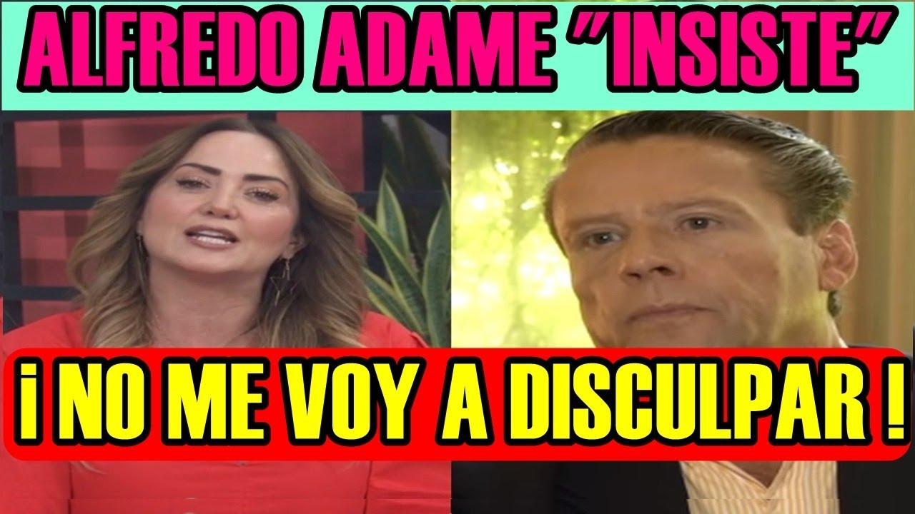 Andrea Legarreta Cojiendo alfredo adame insiste en que no pedirÁ disculpas a andrea legarreta