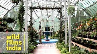 City Of Miami Gardens Scott Lake Elementary Botanical