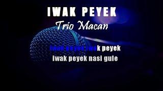 Download Karaoke Iwak Peyek - Trio Macan (Tanpa Vokal)