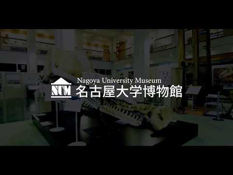 博物館PR動画