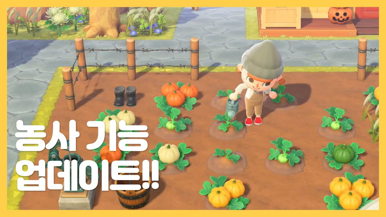 [모동숲] 드디어 농사가 가능해진다!! 새로운 커스터마이징까지?! 가을 업데이트 소식 정리!!