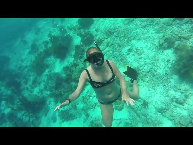 Snorkeling at Klein Bonaire