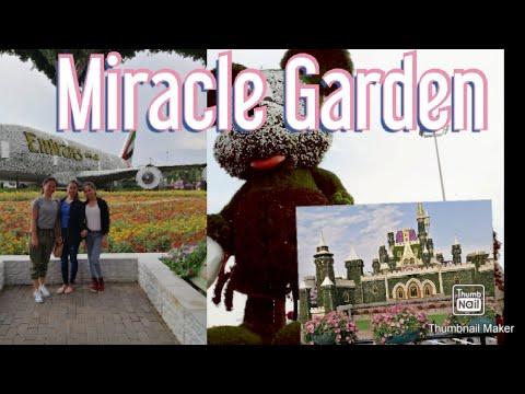 Dubai Miracle Garden 2019 / Lilet Banguiz