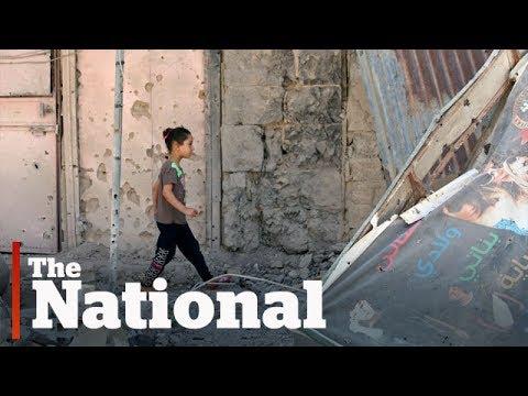 Syrian ceasefire elicits cautious optimism