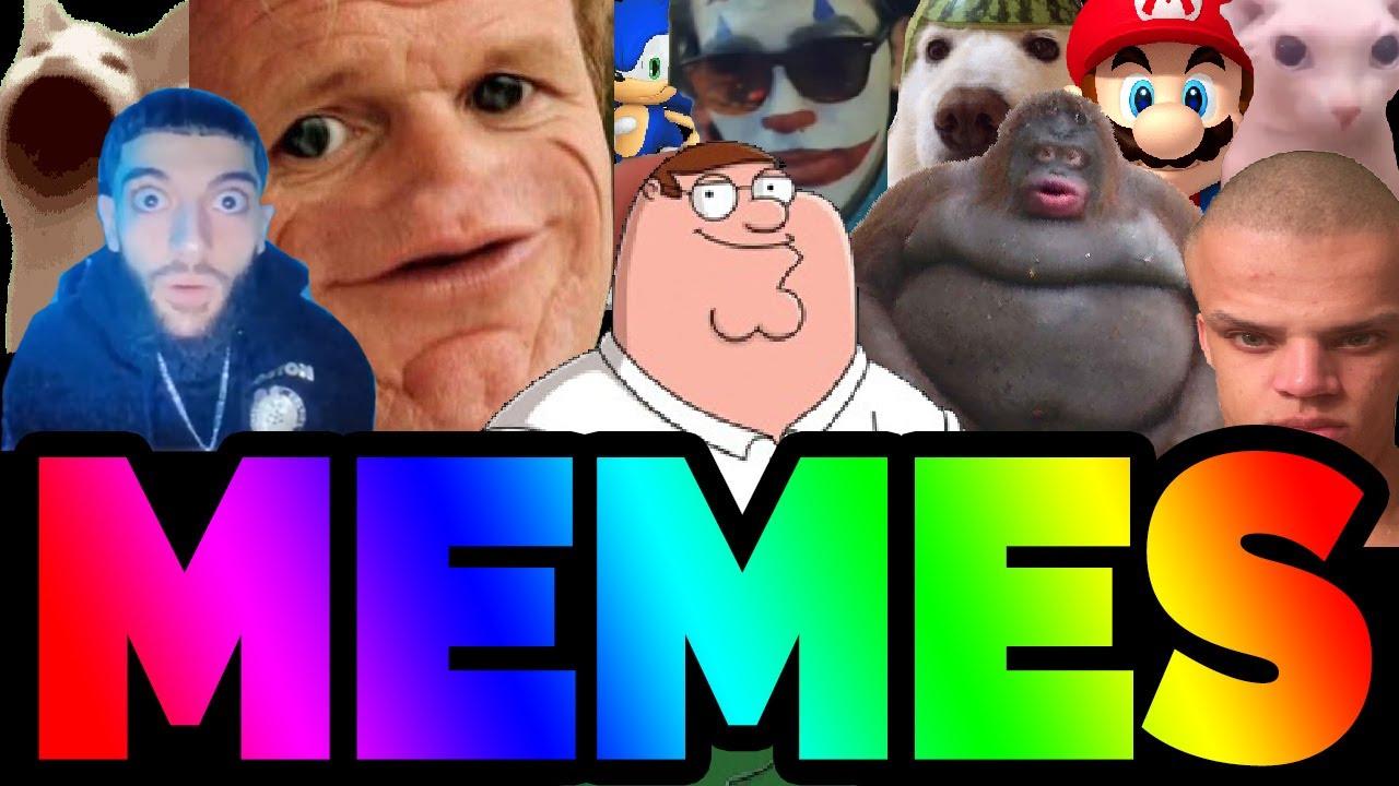 Download Best Meme Mp4 Mp3 3gp Daily Movies Hub