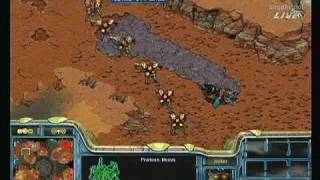 Map: Colosseum II Young (Protoss) - Name: 노영훈 (Noh Young Hoon) -...