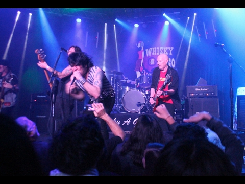 Cheetah Chrome of the Dead Boys - Sonic Reducer - Live at the Whisky a go go