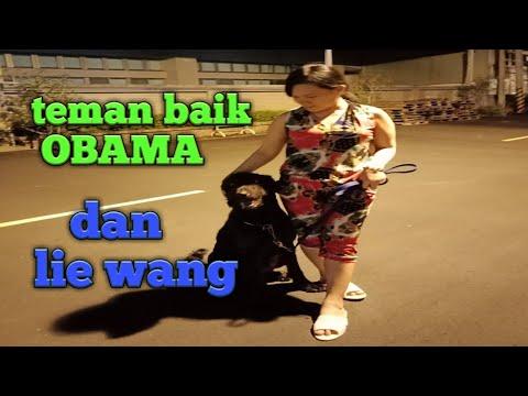 #tkw_taiwan-rutinitas-malam-#mba_ain-tkw-vietnam