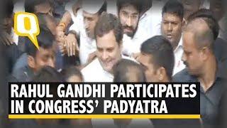 Rahul Gandhi Joins Padyatra in Delhi For Bapu's 150th Birthday