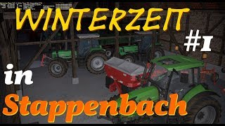 Winterzeit in Stappenbach #1