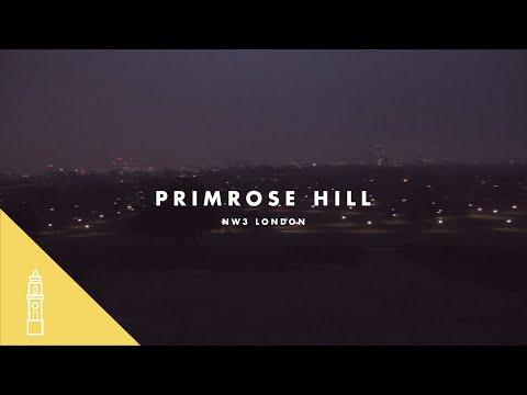 Primrose Hill At Dawn