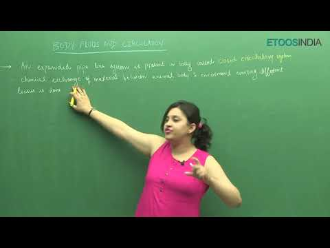 NEET I Biology I Body fluids and its circulation I Shivani Bhargava (SB) Mam from ETOOSINDIA.COM