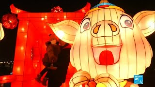 Chinese New Year: celebrations usher in year of the pig