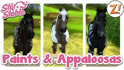 Star Stable [SSO]: Neues Paint Horse & Appaloosas [Update 01.07.2015] | Let's Play ♥ [GER/DEU]