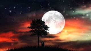 Вой на луну