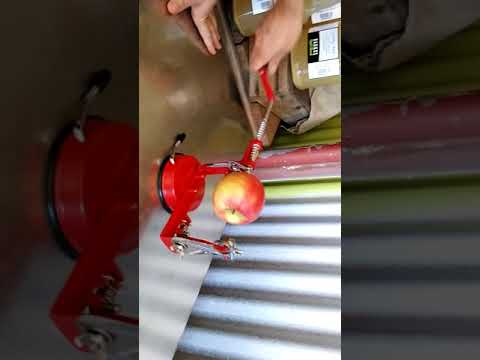 Apple Peeler Slicer Corer  in Australia with friends