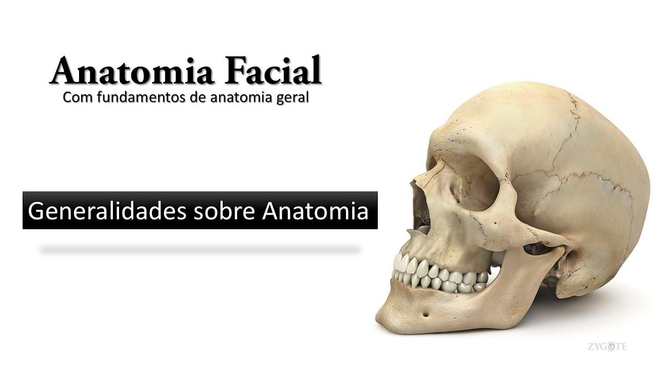 Anatomia Facial - Aula 01 - Generalidades sobre anatomia - YouTube