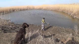 В Поисках Хищника Весенняя Рыбалка на Озерах и Ериках в Пойме
