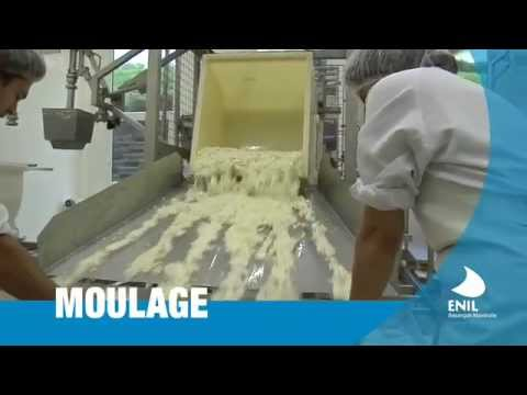 Fabrication de fromages à pâte molle (Camembert...) - YouTube