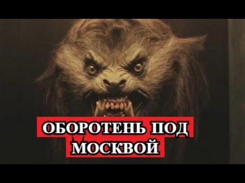 ОБОРОТЕНЬ из п.МЕЩЕРСКОЕ  МОСКВА