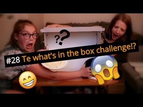 #28 Amigo Juniori | Te what's in the box challenge ar ENGELMEITENI