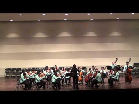 G. Donizetti:Allegro for Strings in C Major