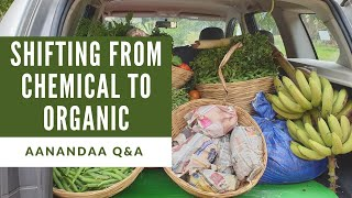 Q&A | How to switch to organic farming?